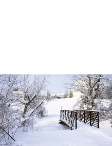 Holiday Greeting Cards Landscape Template: 581229