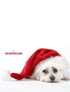 Keller Williams Greeting Cards Landscape Template: 304585
