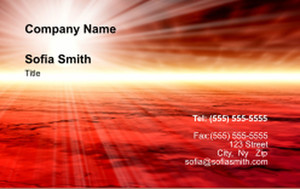 Top Picks Business Cards Credit Card Template: 335910