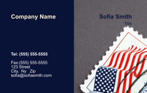 USA Business Cards Credit Card Template: 335873