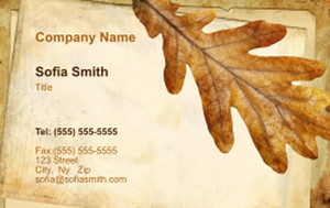 Top Picks Business Cards Credit Card Template: 354527