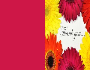 Special notes Greeting Cards Portrait Template: 319240