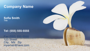 Travel Agencies  Business Cards Template: 333405