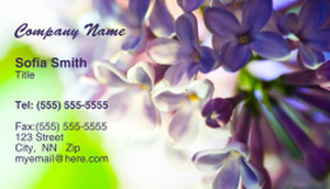 Colorful Business Cards Template: 309996