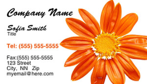 Colorful Business Cards Template: 309978