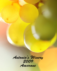 Button to customize design Wine - Vinyards Labels Template: 332533