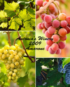 Button to customize design Wine - Vinyards Labels Template: 332535