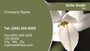 Appealing, Styish Flowers Business Cards Template: 308156